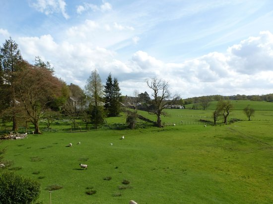 West Vale Country House: The view from Room 5