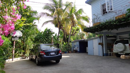 Anchorage Jamaica Bed & Breakfast: Plenty of space to park rented cars..reesidence is about  21 kms from Norman Manley Airport
