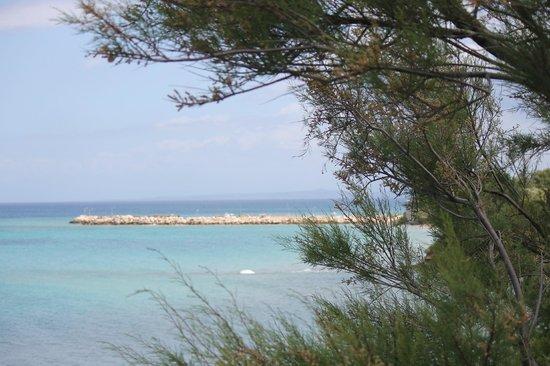 Porta del Mar Beach Hotel: Looking across the beach area