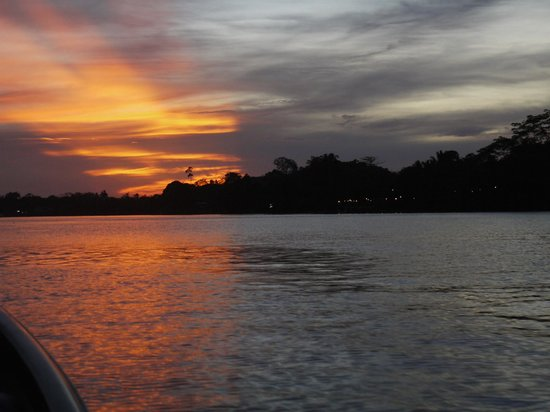 Sukau Rainforest Lodge : Sunset on the river