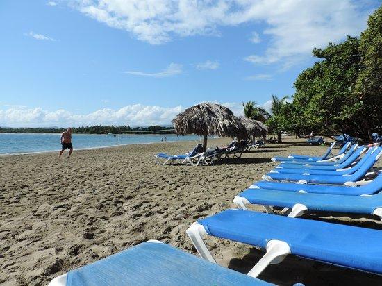 Barcelo Puerto Plata : The beach