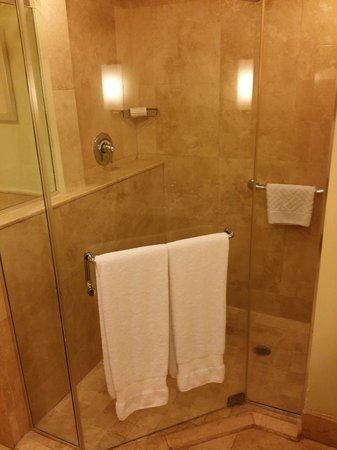 Caribe Hilton San Juan: The shower stall in the bathroom of 1766.  No tub, but a waterfall showerhead AND a hand held sh