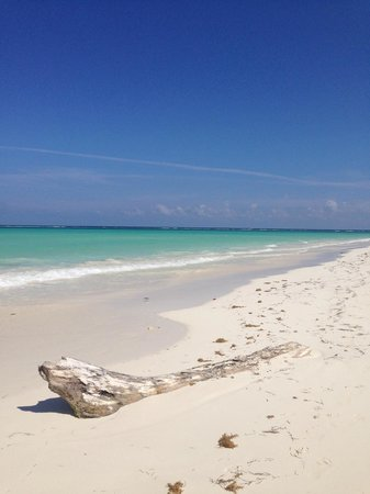 Amarte Hotel: A view of the private beach