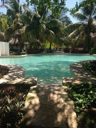 Amarte Hotel: Pool area