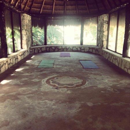 Amarte Hotel : Yoga studio