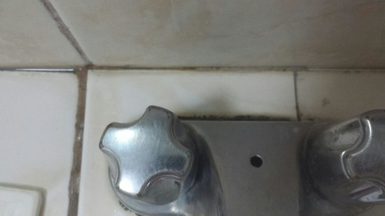 Bacolod Pavillon Resort Hotel: Scum and mould in between tiles and behind the tap