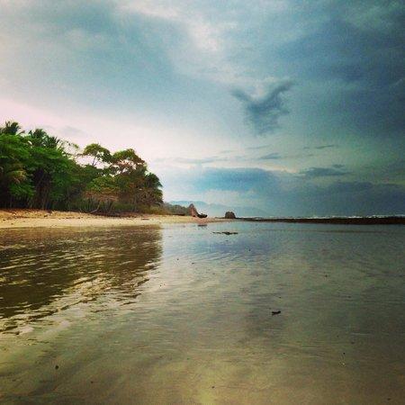Blue Surf Sanctuary: Up the coast