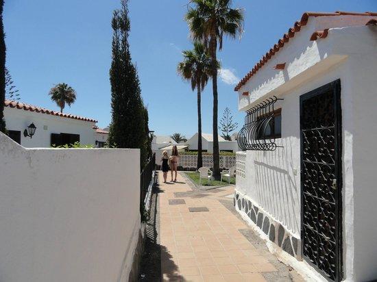 Santa Clara Bungalows : Grounds