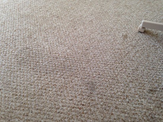 Sand Cay Condominiums Beach Resort: Stained carpet