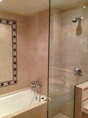 Gran Hotel Atlantis Bahia Real: Shower