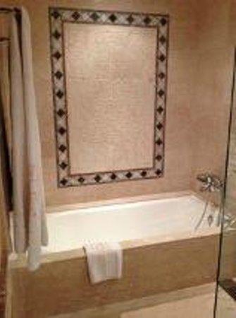 Gran Hotel Atlantis Bahia Real: Bathroom