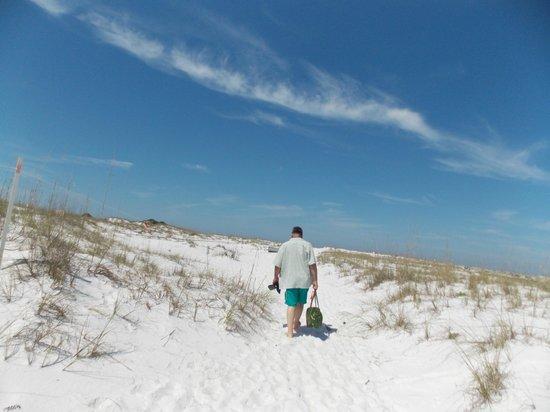 Shell Island: Walking across to the gulf side