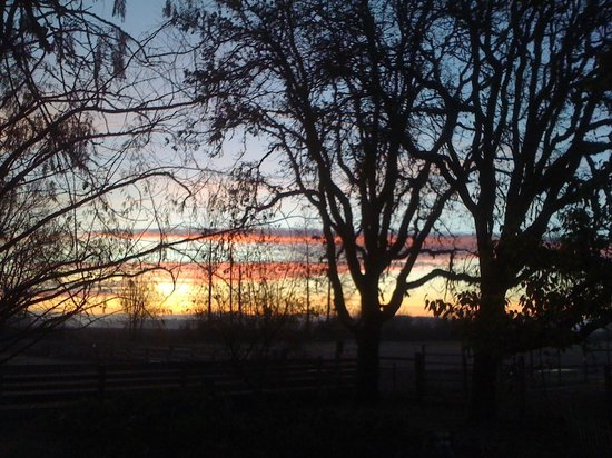 Territorial Bed and Breakfast and Barn : Sunrise view from the back deck