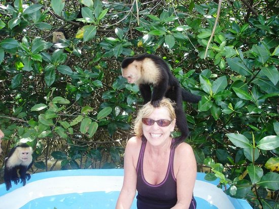 Costa Rica Waterfall Tours: They love blonds