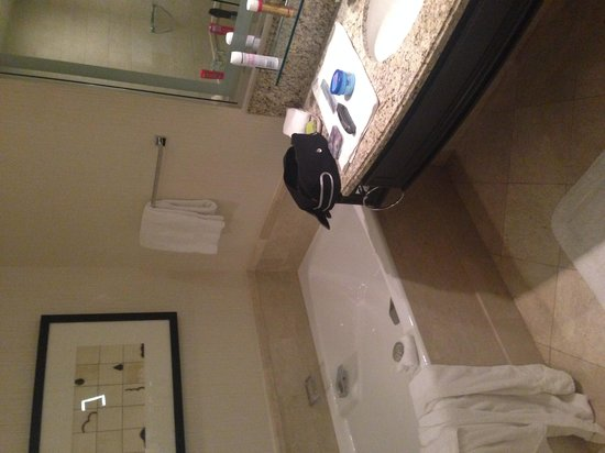 Four Seasons Hotel Las Vegas: Shower and Bathroom