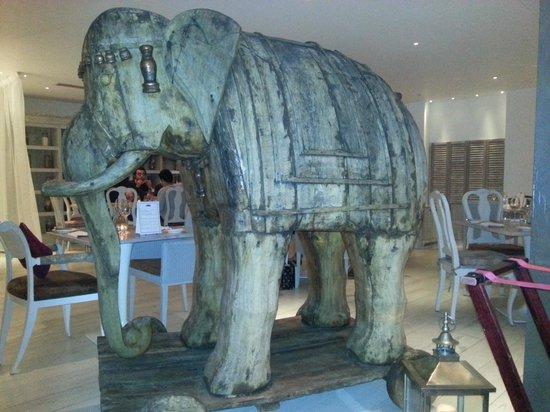Mr Todiwalas Kitchen: Troy the mascot