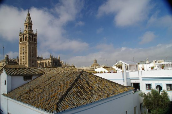 Los Seises by Fontecruz: Rooftop view
