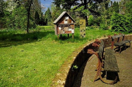 Arboretum Trompenburg: Уголок парка