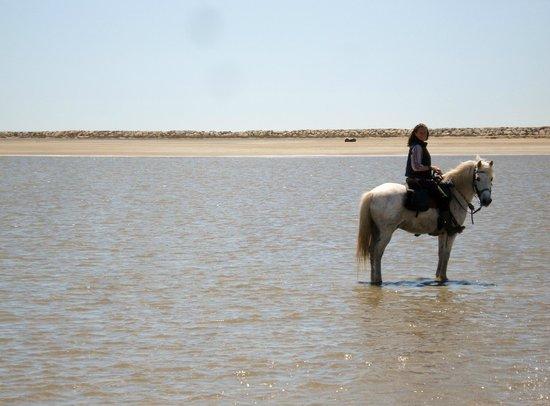Promenade à cheval, Chez Elise : Elise,au Grand Radeau