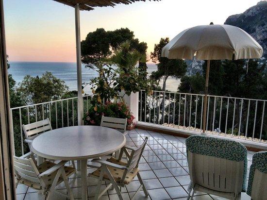 Villa Brunella : Terrace
