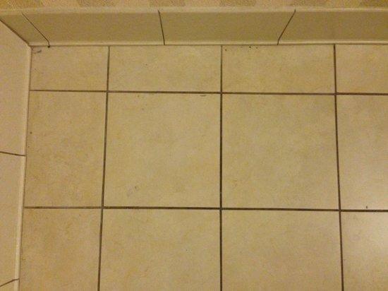 Hyatt Regency Savannah : Dirty bathroom floor under table