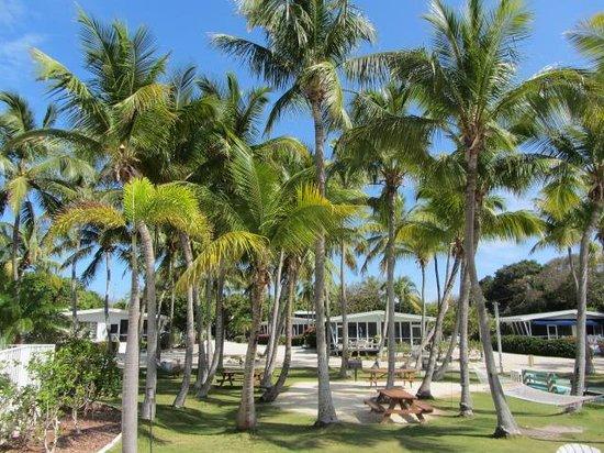 Kon-Tiki Resort: Bayview rooms