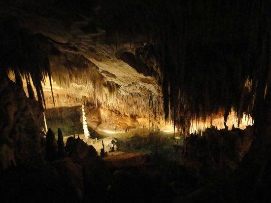 """Coves del Drac (Drachenhöhlen): Cueves del Drach или """"Пещера дракона"""""""