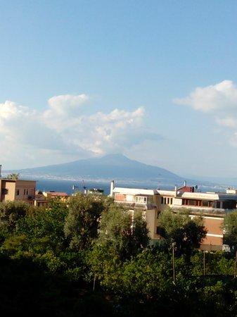 Conca Park Hotel: Mount Versuvio from the bedroom