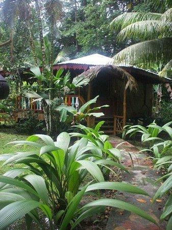 Hotel La Costa de Papito: Cabin