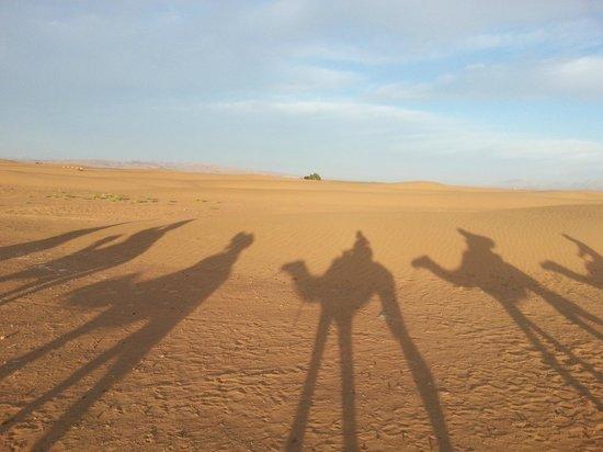 Trekking Morocco Mountains - Day Tours: dirt of Sahara