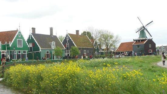 Zaanse Schans : Il piccolo borgo di Zaanse