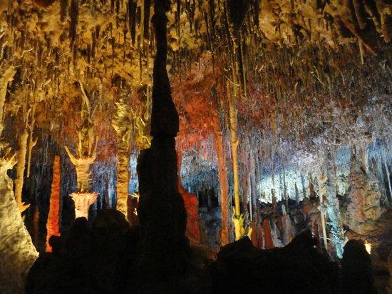 Cuevas dels Hams : Cuevas del Hams (Cuevas Porto Cristo)