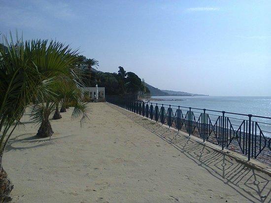 Hotel Villa Eva Restaurant and Beach : spiaggia privata di sabbia con palme