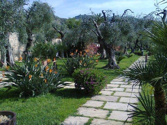 Hotel Villa Eva Restaurant and Beach : giardino
