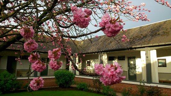 Les Charmilles: Un patio se cache au coeur de la maison