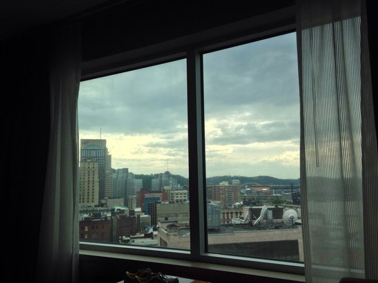 The Westin Convention Center Pittsburgh: View from the room