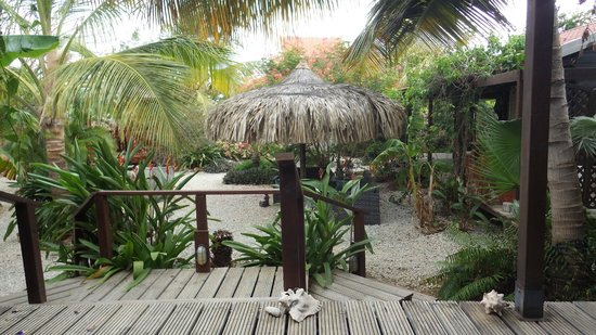 Bamboo Bali Bonaire - Boutique Resort: The view from our deck.