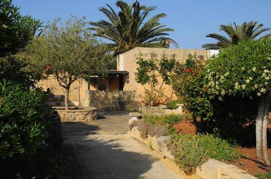 Hotel Ta' Cenc : Hotel grounds