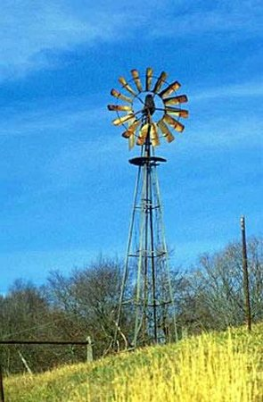Roddy Tree Ranch : Windmill out in Hunt, Texas.