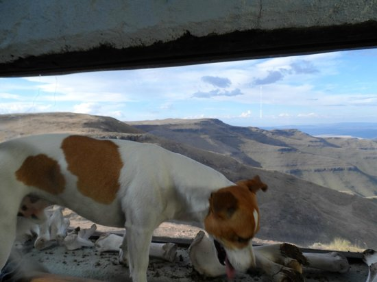 Tenahead Lodge: The view from the Vulture hide with Tena !