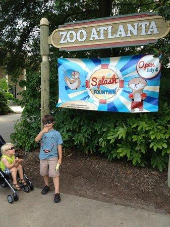 Zoo Atlanta : Oh boy. Best be prepared for the splash pad. We weren't.