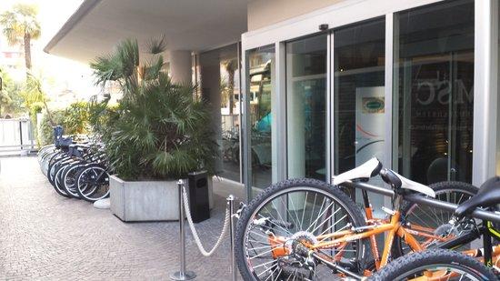 LakeFront Hotel Mirage: bici a noleggio di tutti i tipi .ottimo