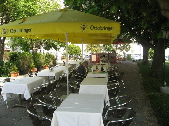 Hotel Lenas Donau: garden