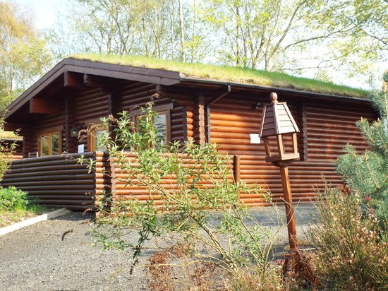 Meikleour Beech Hedge: Beech Hedge Lodge