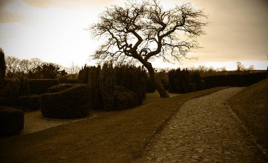 Richmond Castle: Burggarten