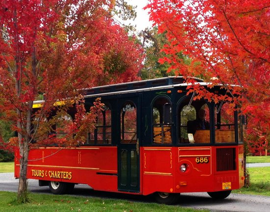 Review of Allaboard Trolley Tours