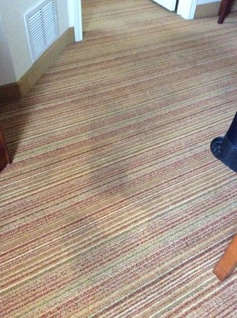 Residence Inn Dallas Park Central: more out house stains