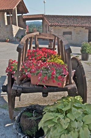 Casa de Maside: Flores