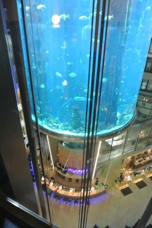 Radisson Blu Hotel, Berlin: dall'ascensore