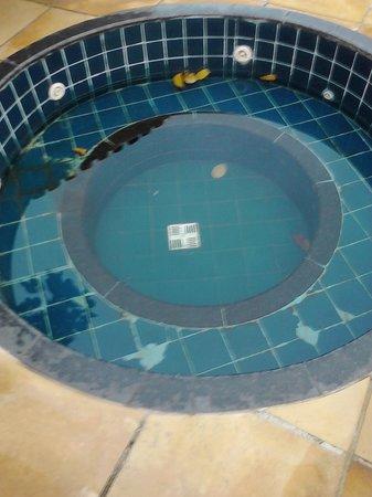 Barra Sol Praia Hotel: Jacuzzi desde hace meses sin funcionar, conforme comentarios previos.
